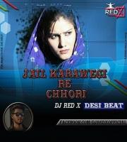 Jail Karawegi Re Chhori (Desi Beat) Dj ReD X