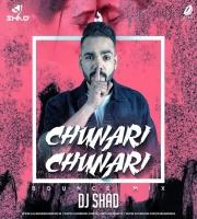 Chunari Chunari (Bounce Mix) - DJ Shad
