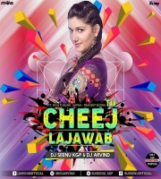 TU CHEEJ LAJAWAB (REMIX) DJ SEENU KGP AND DJ ARVIND