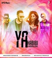 Ya Habibi (Remix) - DJ Madwho