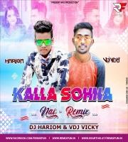 Kalla Sohna Nai (Remix) Dj Hariom X VDj Vicky