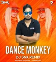 Dance Monkey (Remix) DJ SNK