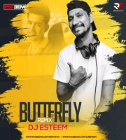 Butterfly Remix - DJ Esteem