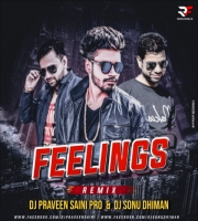 Feelings (Remix) - DJ Praveen Saini & DJ Sonu